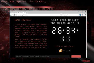 Obrazek przedstawiający stronę opłat BadRabbit