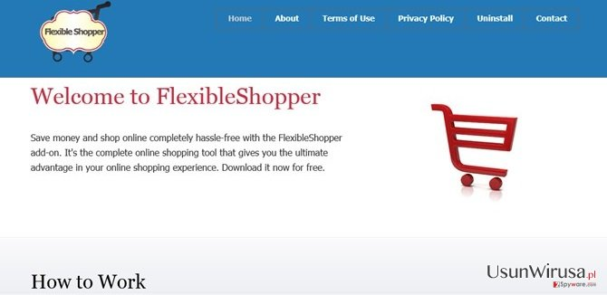Reklamy FlexibleShopper snapshot