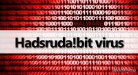 hadsrudabit-malware_pl.jpg