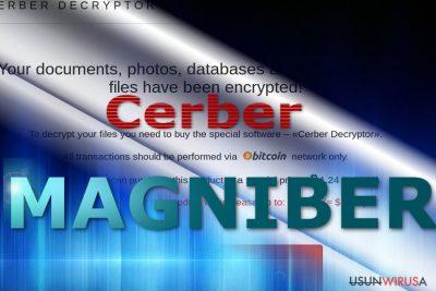 Strona opłat wirusa Magniber