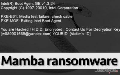 Wirus ransomware Mamba nie pozwala użytkownikowi na korzystanie z komputera