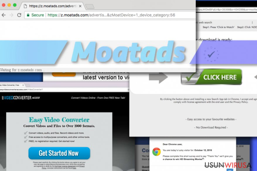 Moatads virus