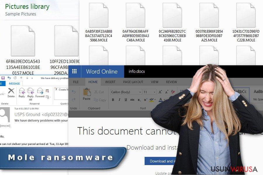 Obraz przedstawiający wirusa ransomware Mole