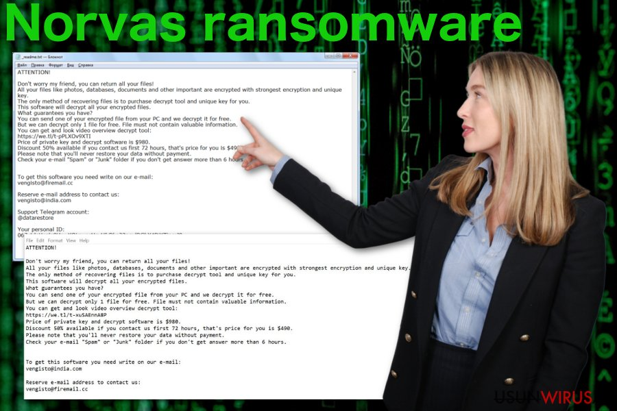 Ransomware Norvas