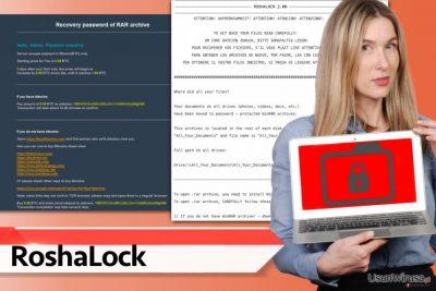 Oprogramowanie RoshaLocker