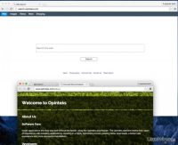 search-opinteks-com-virus_pl.jpg