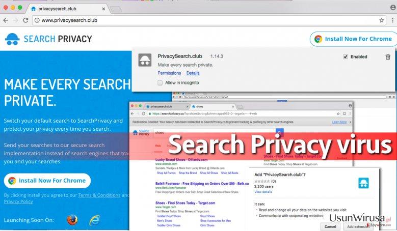 Search Privacy virus