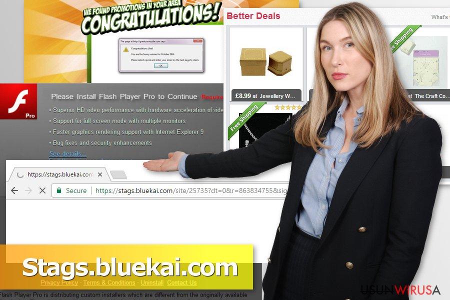 Prezentacja wirusa Stags.bluekai.com