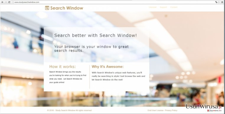 Study Search Window virus example