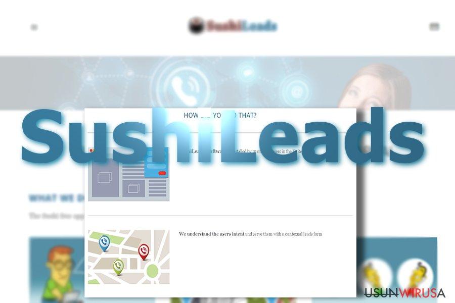 Reklamy od SushiLeads snapshot