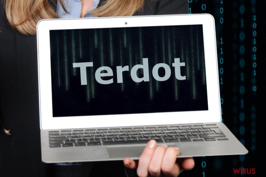 Obrazek przedstawiający malware Terdot