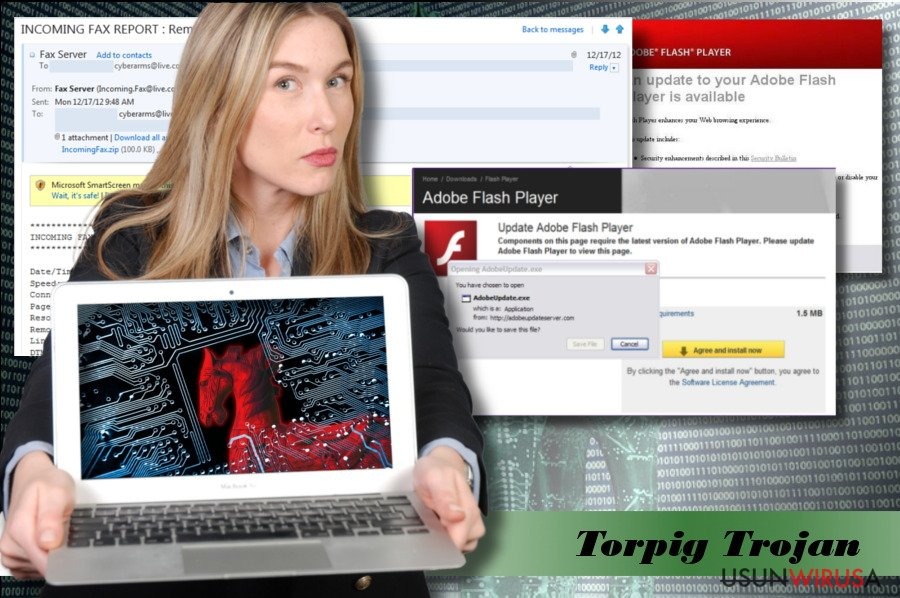 Przykład wirusa Torpig