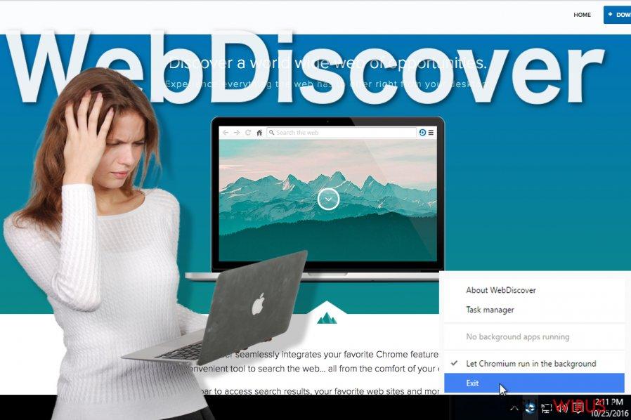Wygląd przeglądarki WebDiscover
