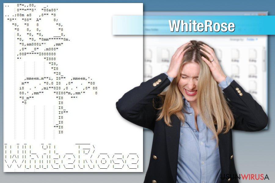 Atak ransomware'a WhiteRose