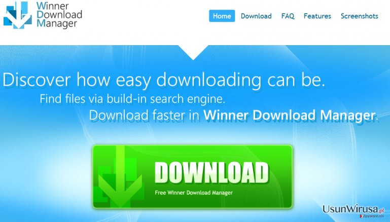 Winner Download Manager snapshot